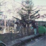 dicembre 1985 - 2